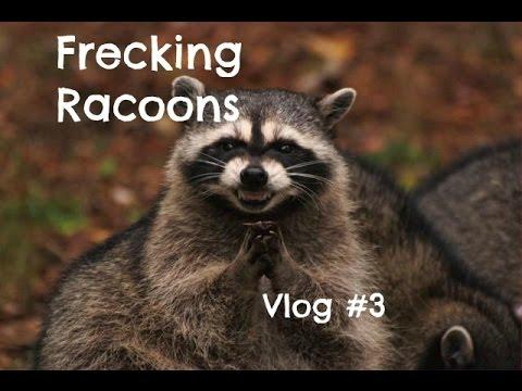 Frecking