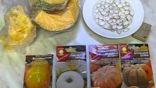 Дача, февраль -2. Готовим семена тыквы.(Готовимся к дачному сезону. Разбираем семена тыквы. Вечерняя болталка на кухне., 2016-02-09T06:44:38.000Z)