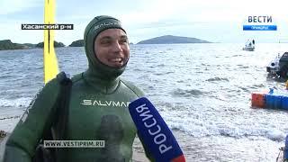 """""""Территория Приморья"""": Подводная охота - кому достался главный улов и приз победителя"""