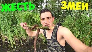 Опасная подводная охота на болоте и с змеями. Карп на гриле с овощами