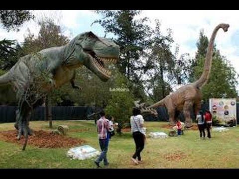 Animales Prehistóricos (Dragones o Dinosaurios)