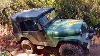 Jeep Willys 1965 do Melim