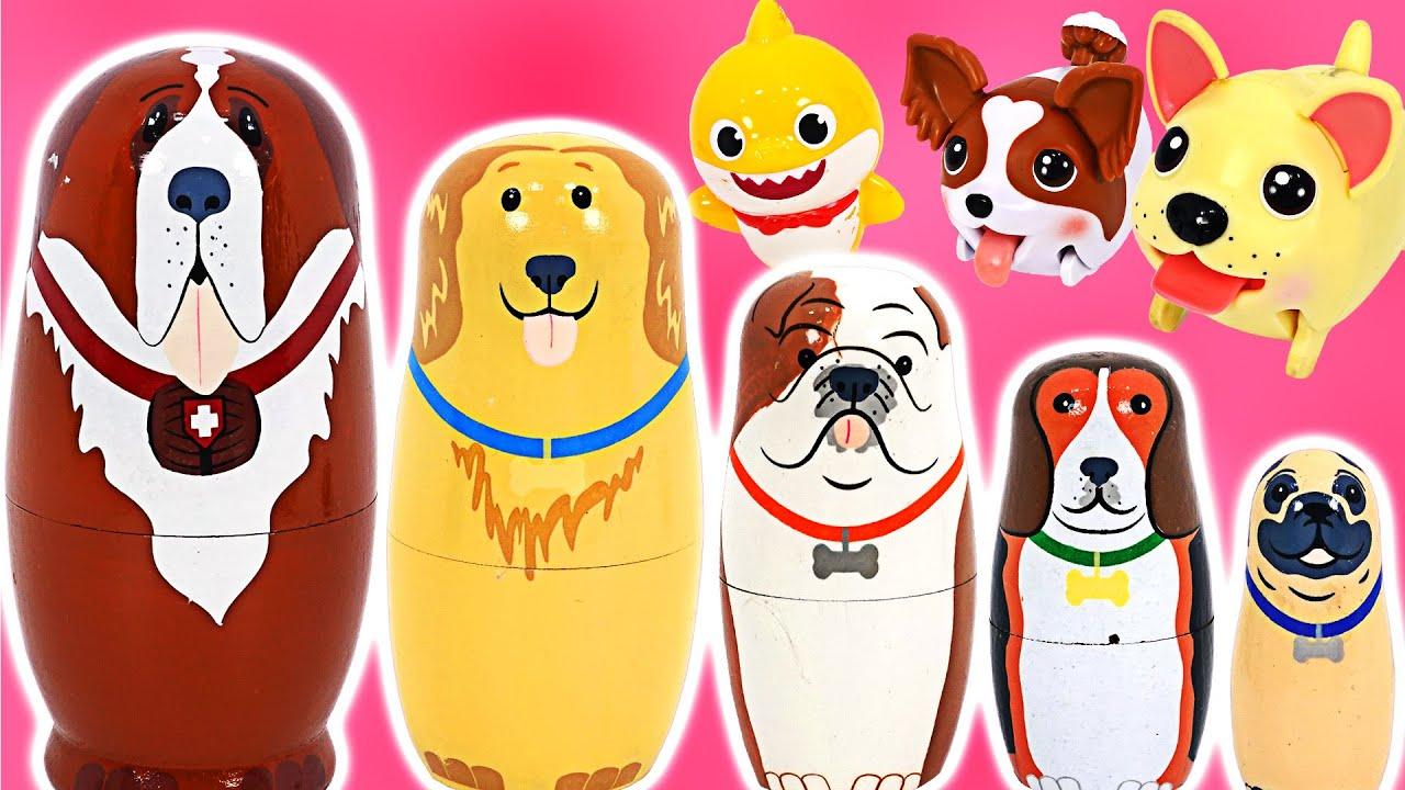 아기상어와 핑크퐁~ 마트료시카 강아지랑 함께 놀자~ | 핑키팝토이