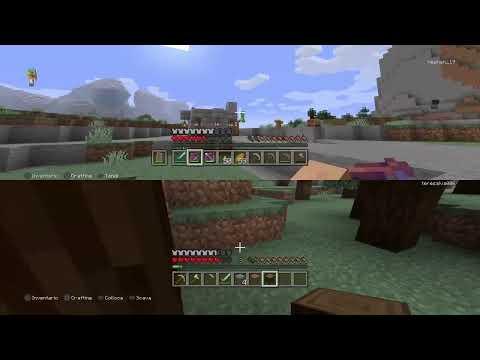 Minecraft Un Quasi PRO0 Nel Mio Mondo