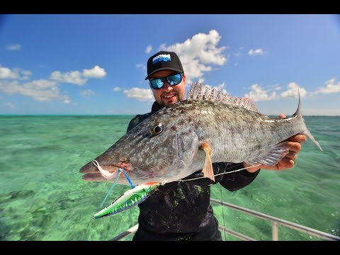 Nomad Sportfishing - Ifish TV Show At Tydeman Reef & Claremont Isles