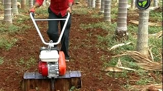 Rotary Tiller or Power Weeder