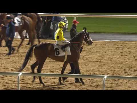 Race 3 Al Shindagha Sprint