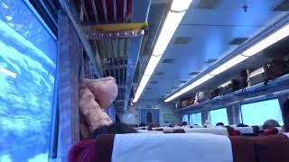 キハ182-3 新函館北斗→大沼 特急「北斗95号」 キハ183系 JR北海道 函館本線 8023D