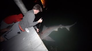 Dock Fishing DISASTER! -- Big Shark Takes Us Under! (Florida Send DAY 2)