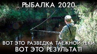 ВОТ ЭТО РАЗВЕДКА ТАЕЖНОЙ РЕКИ ВОТ ЭТО РЕЗУЛЬТАТ РЫБАЛКА 2020