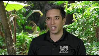 3D Printing Technology Helps Cincinnati Zoo's Meerkats Mimic Wild Behaviors