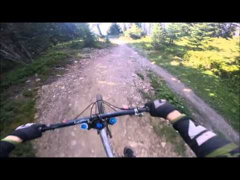 Schladming Bikepark Planai - Downhill Pro - 2015