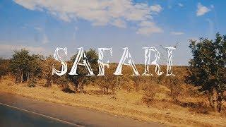 Safari • Mikumi National Park