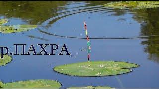 река ПАХРА, Подмосковье, занесло меня в иноземные красивые места :) Поплавочная удочка. Рыбалка