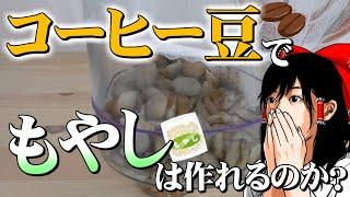 【ゆっくり実験】コーヒー豆からもやしは作れるのか?【霊夢博士】