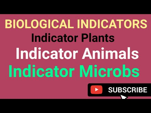 Biological Indicator Organisms