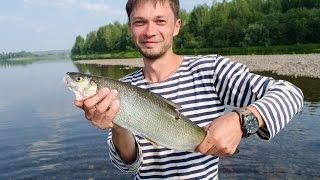 Сплав по реке Киренга.(Видео о рыбалке, о путешествиях по Сибирким рекам, о ловле щуки, окуня, ленка, тайменя и других видов рыб!..., 2014-11-09T11:52:08.000Z)