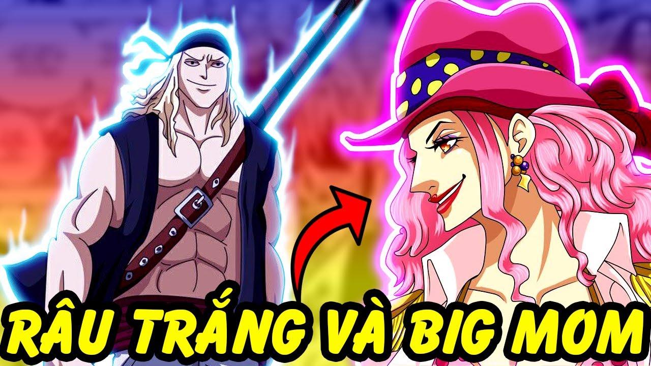 Thời Trẻ Của Các Tứ Hoàng Đã Như Thế Nào   Sự Thật Thú Vị Trong One Piece