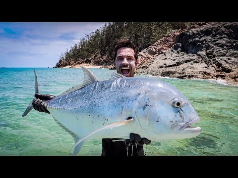 GIANT TREVALLY ROCK FISHING! Part 2 Tropical Beach Release!