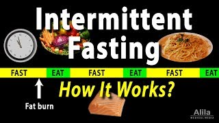 Fasting for Weight Loss - Intermittent Fasting - How it Works? Animation
