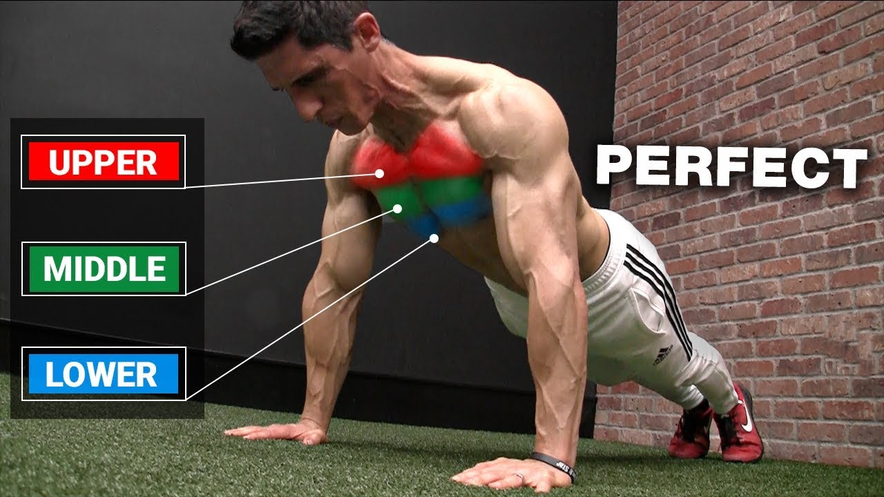 The Perfect PUSH-UP Workout (3 LEVELS) - YouTube