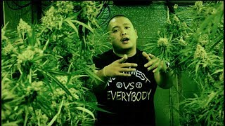 Jeff Patron - Everything Green (Official Music Video)