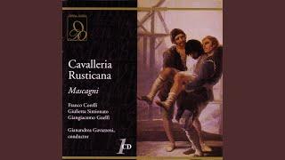 Mascagni: Cavalleria Rusticana: Ah! Lo vedi che hai tu detto?