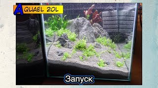 Запуск аквариума AquaEl 20l ● Акваскейп
