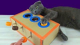 игрушка для кота из картона своими руками. Поделки из картона