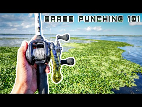 Punching Matted GRASS For BASS 101 (ONLY Video You Need)