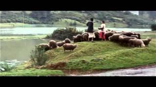 Karna - Aala Maram Video Song