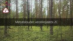 Metsätalouden verotilinpäätös 2C