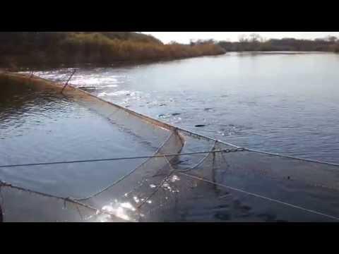 Рыбалка на реке барабашевка хасанского района