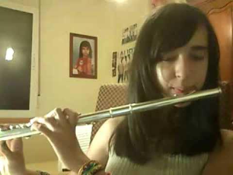 Como tocar la flauta travesera (embocadura y posiciones1)