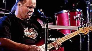 Welcome To The Human Race - Walter Trout, solos by David Locke