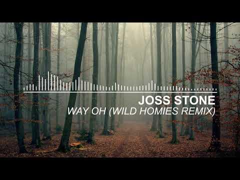 Joss Stone - Way Oh (Wild Homies Remix)