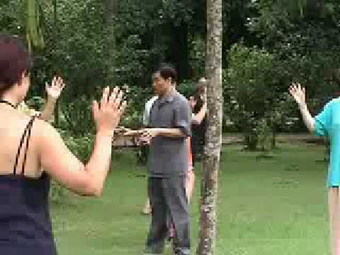 Mantak Chia Cosmic Tree Healing Chi Kung Youtube