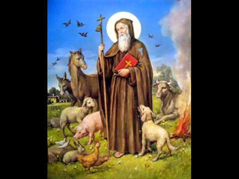canti per sant 39 antonio abate in umbria e abruzzo ecco il