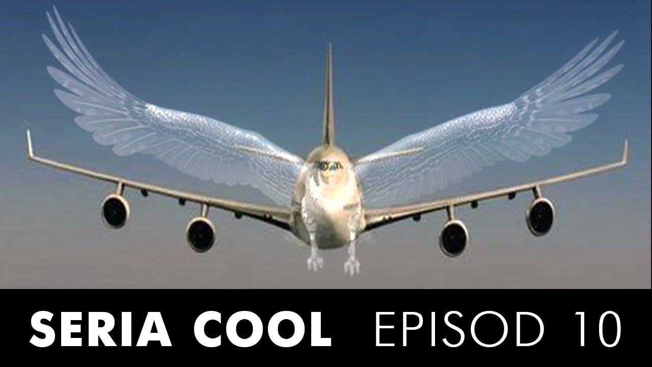 De ce zboară avioanele? (colaborare Zaiafet)
