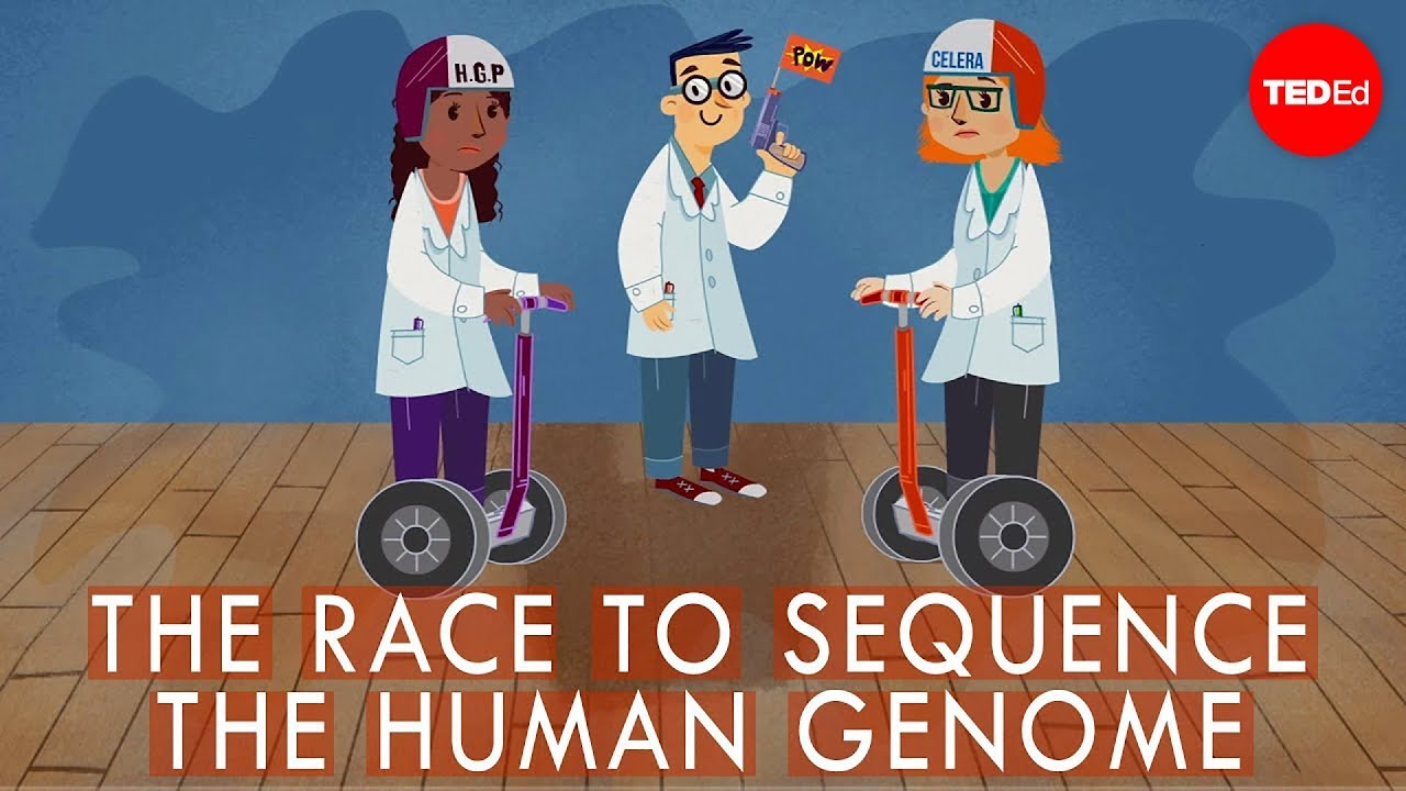 a view on the humane genome project Get information, facts, and pictures about human genome project at encyclopediacom make research projects and school reports about human genome project easy with.