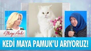 Maya Pamuk'u bulana ödül var! - Müge Anlı İle Tatlı Sert 6 Nisan 2018