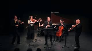 Vincent Lauzer & Quatuor Cobalt - Telemann: Concerto 51:C1 - 4.Tempo di Minuetto