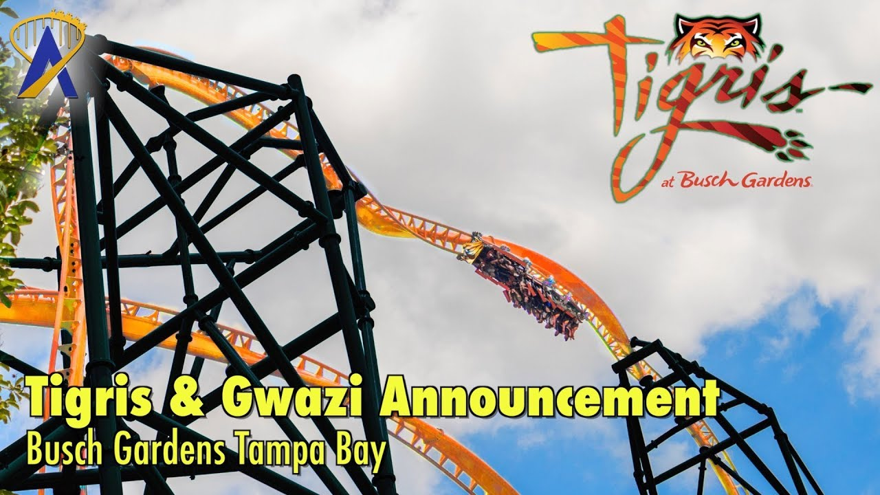 Tigris & Gwazi Announcements at Busch Gardens Tampa Bay