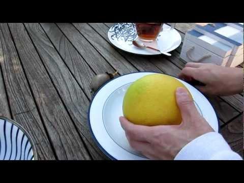 blablabla and passion fruit