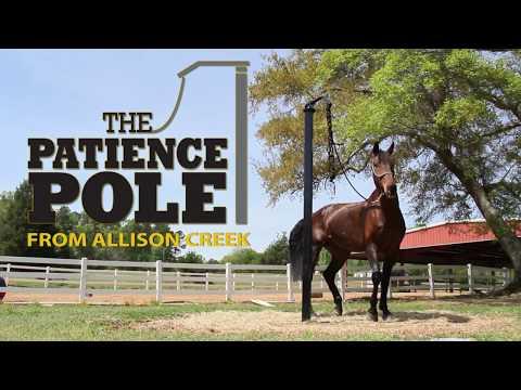 Allison Creek  Patience Pole