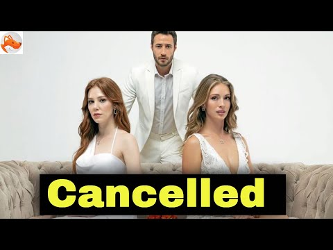 Why was the series Good Days Bad Days cancelled?