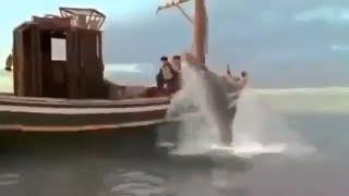 Фильм Большие зубы Ужасы Триллер Драма