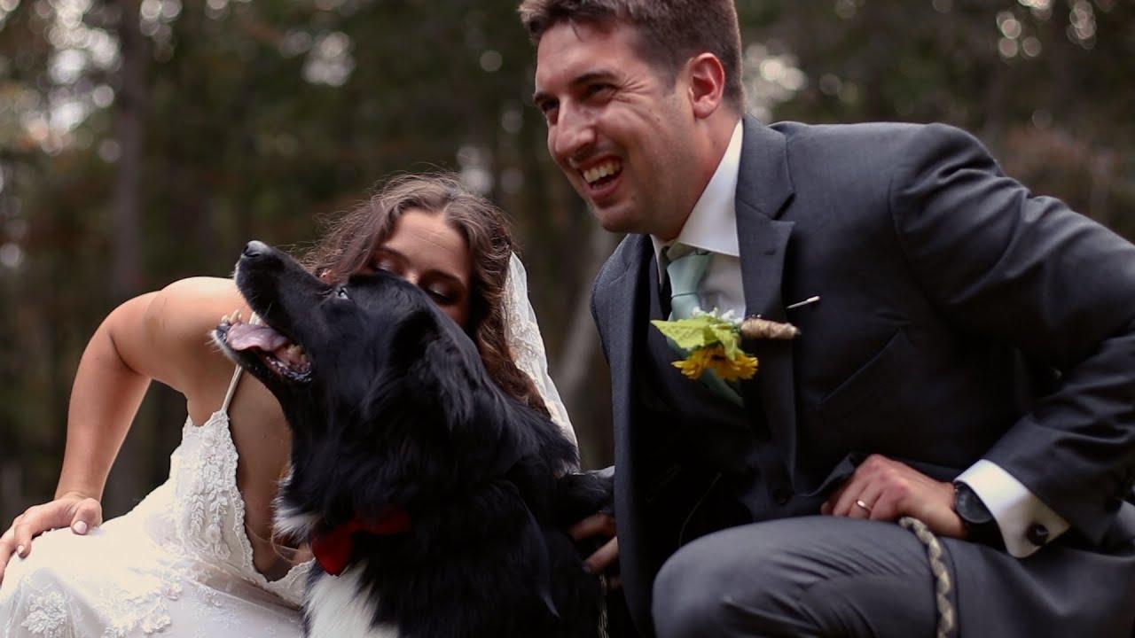 Katie & Dan   Wedding Day Film