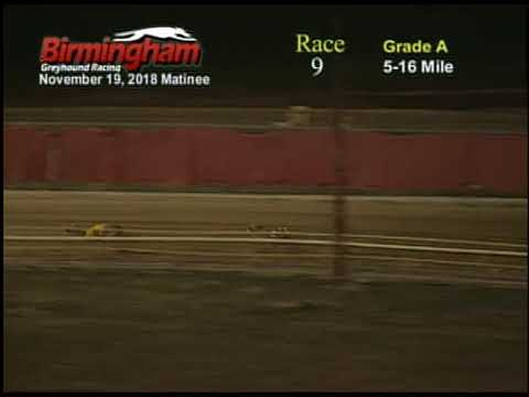 11/19/18 Afternoon Race #9