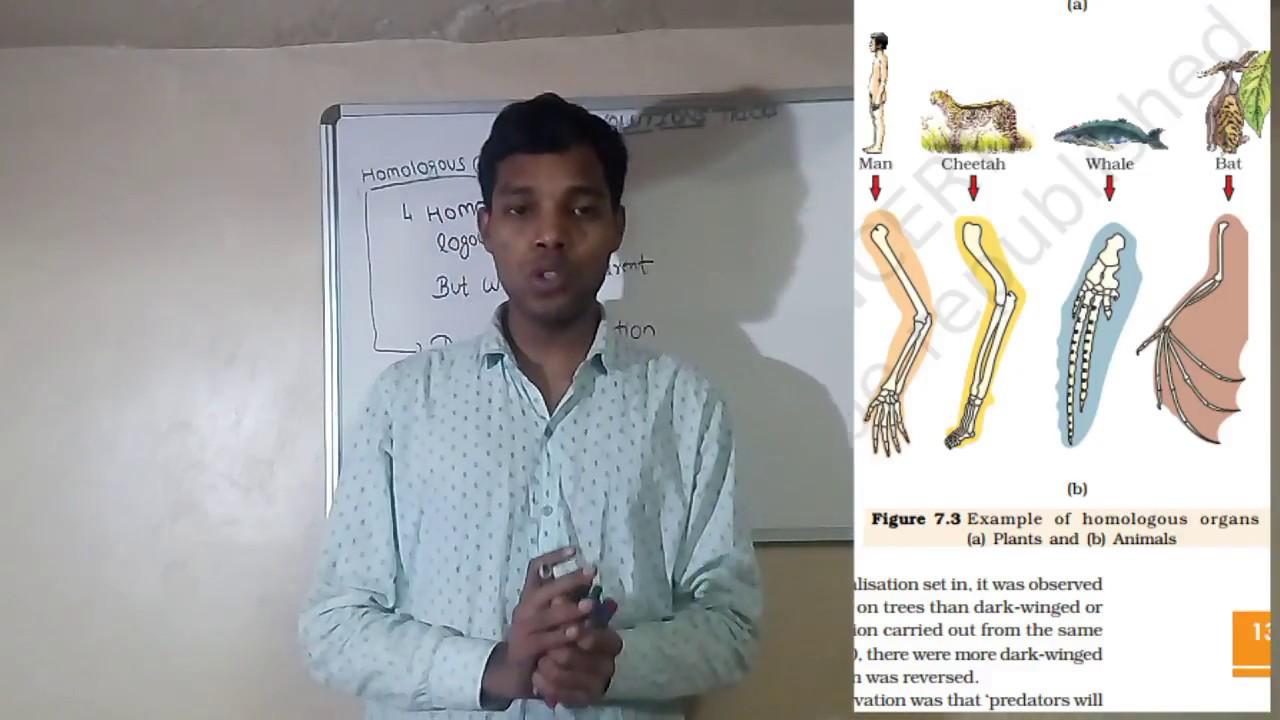 Biology Trick To Remember Evolution Homologous Analogous Organ